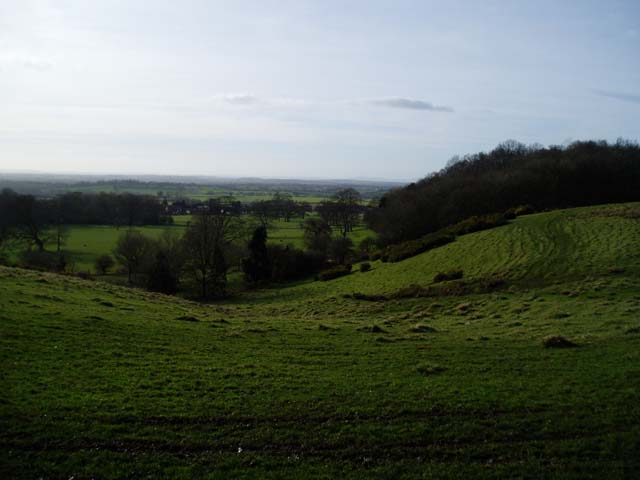 View towards Slade Wood