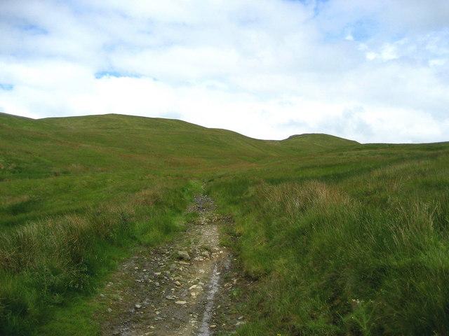 Hoggs Hills