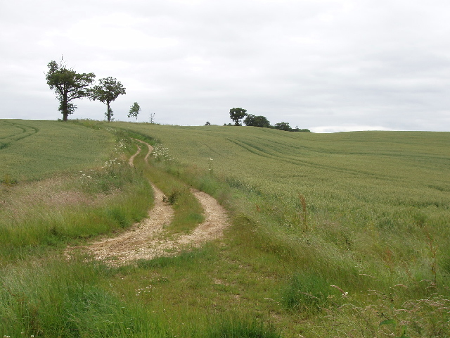 Holback Lane - the Romans went straight up