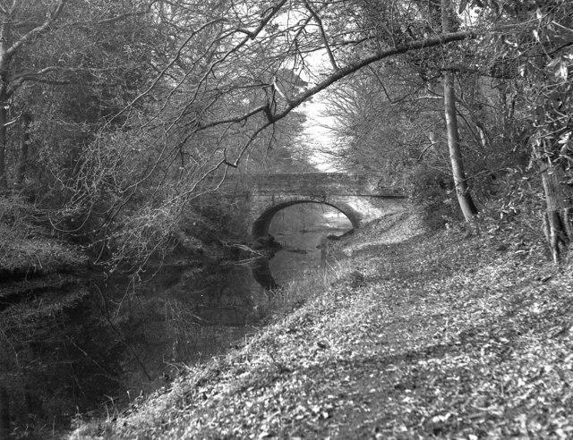 Baseley's Bridge, Basingstoke Canal