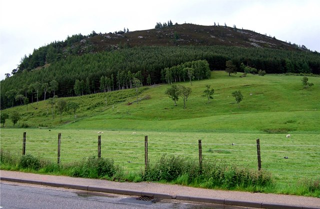 View towards Creag Choinnich