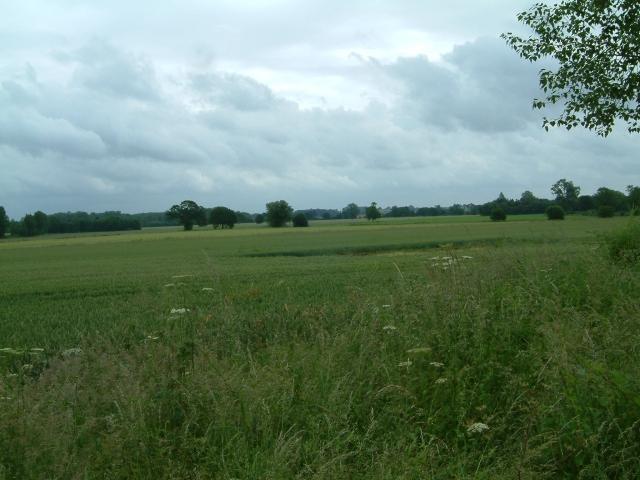 Fields near Brick Kiln Wood