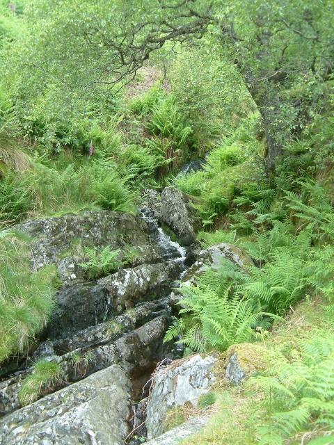 Waterfall at Cwm Eunant Fach