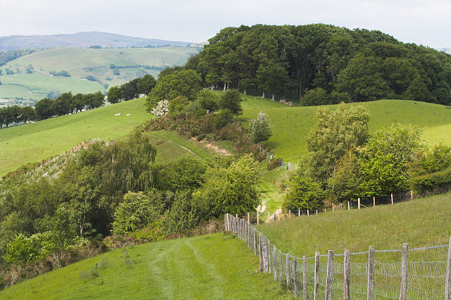 Farmland at Robins Bank