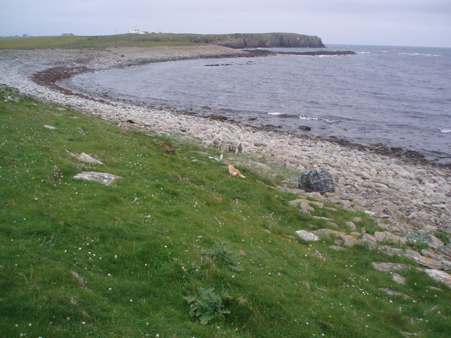 Coastal Scenery, South Ronaldsay
