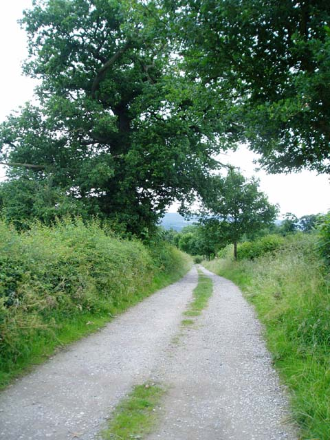 Footpath between Usk Castle and Castle Farm