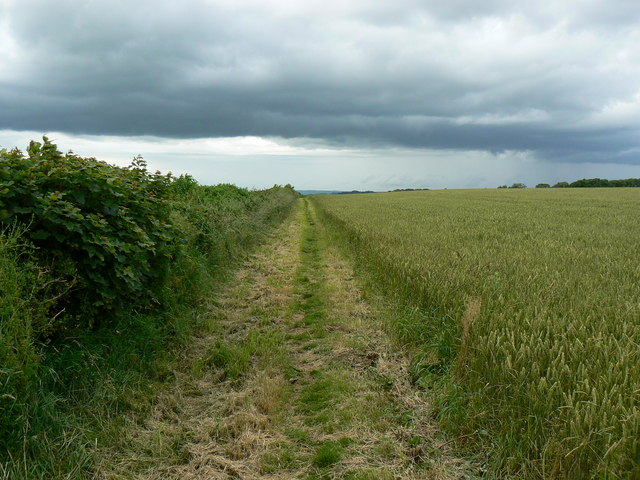 Cotswold Way near Hinton