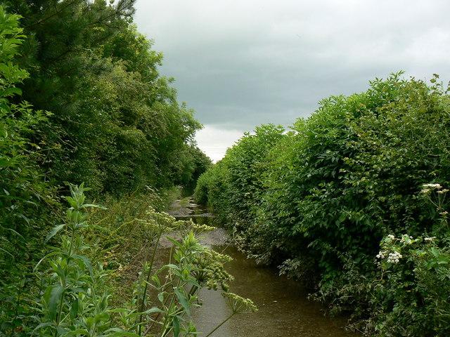 Grove Lane, Hinton
