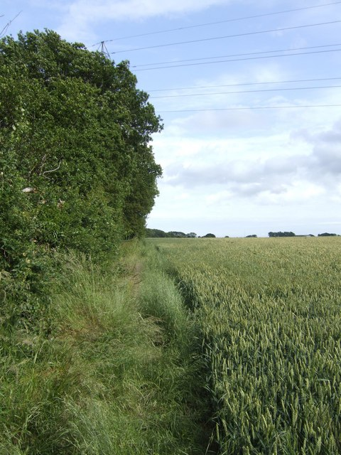 Footpath south of Birches Farm, near Wootton