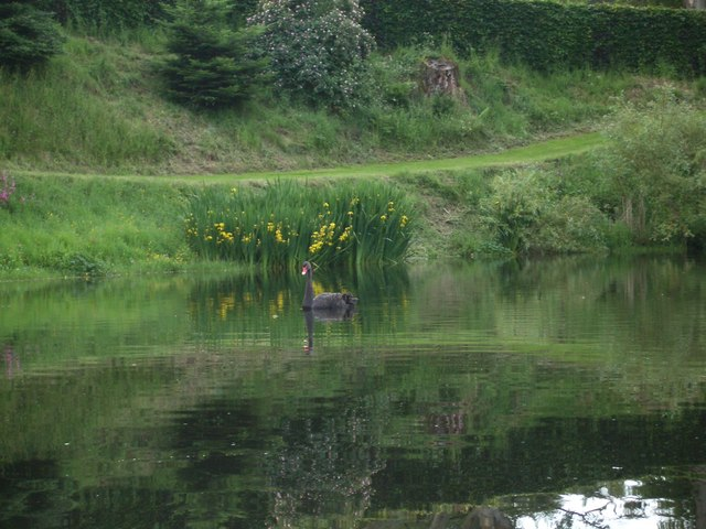 Loch at Haystoun