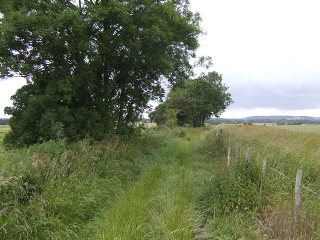 The Stour Valley Walk
