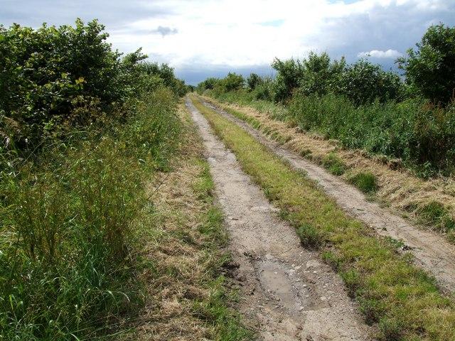 Farm Track near Bar Bridge, Stickney