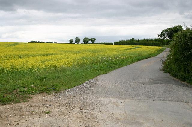 Farm track near Chalk Croft farm