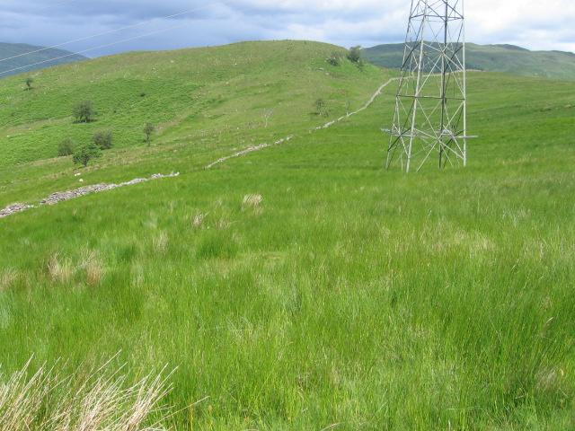 Meall Reidh hillside
