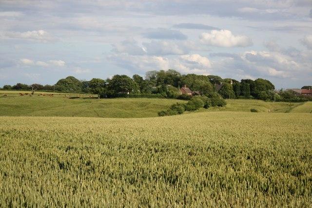 View to North Elkington