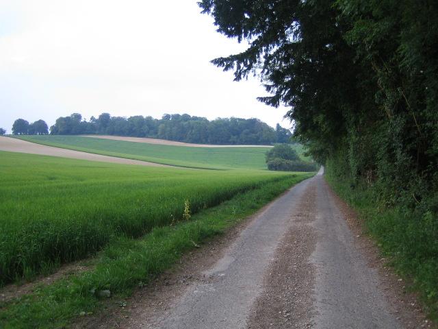 Roman road, Buckholt Lane, Buckholt
