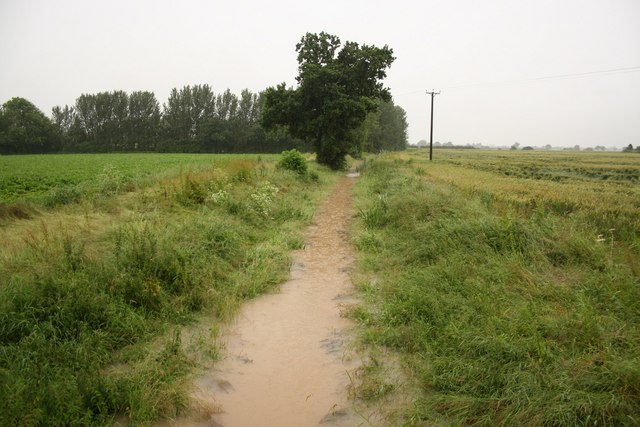 Ox Pasture Drain in flood