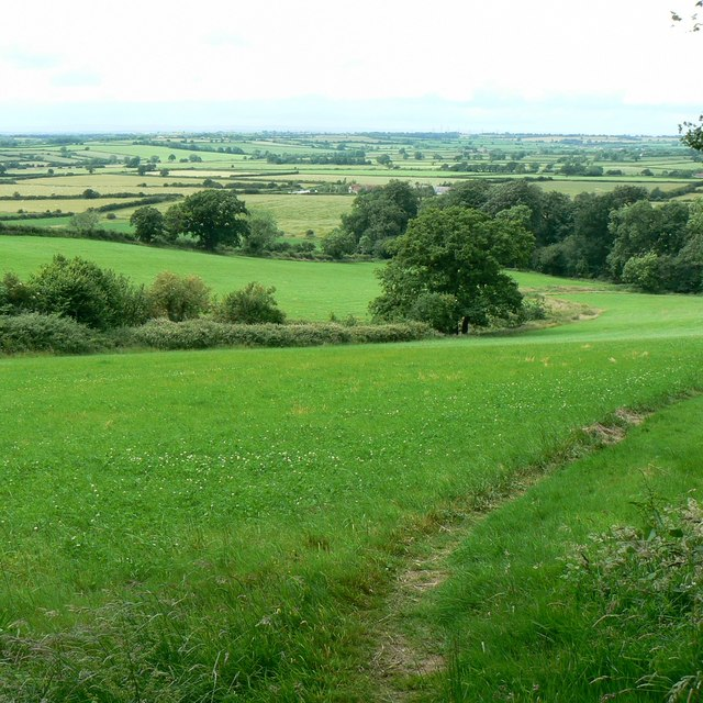 The Cotswold Way, just out of Dyrham Wood