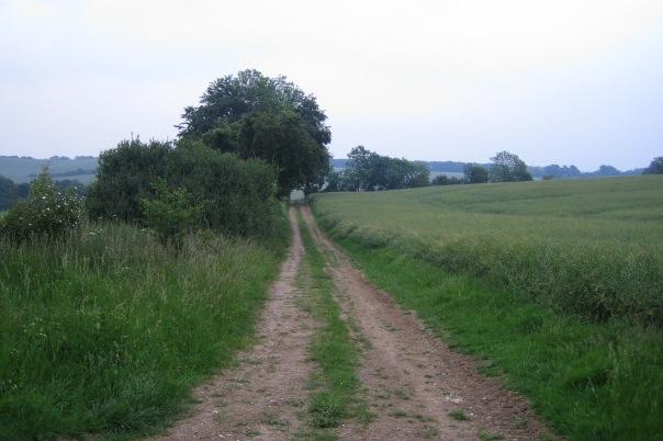 Track near Buckholt Farm, Buckholt