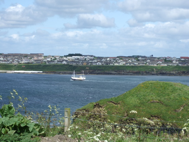 View over Wick Bay