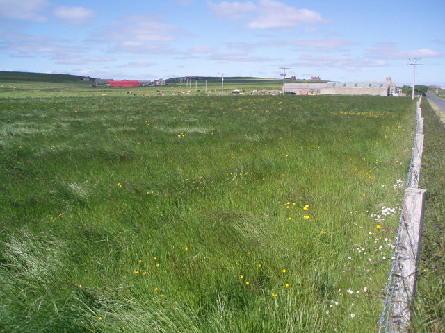 South Ronaldsay Farmland