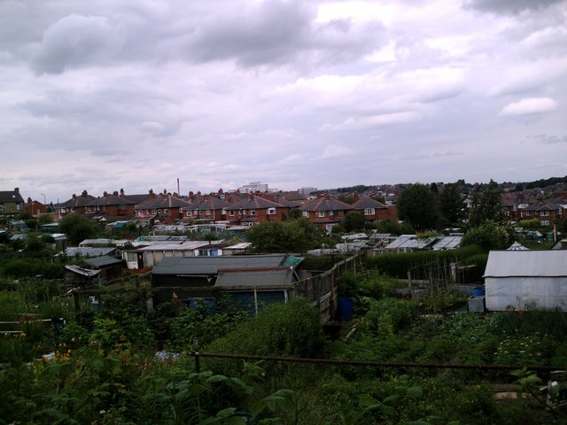 Barnsley Allotments Racecommon Road from Park Rd