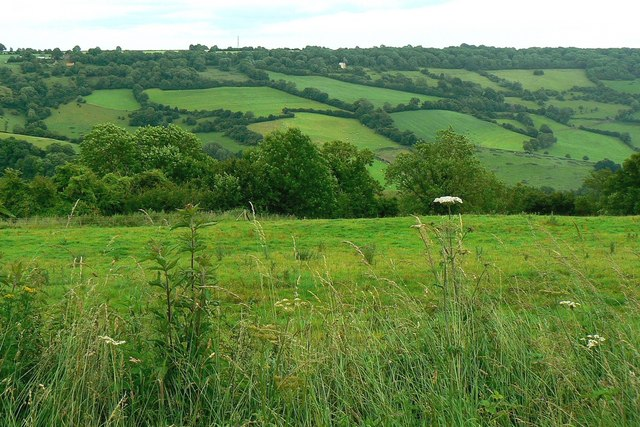 A view across a valley to Banner Down near Alcombe