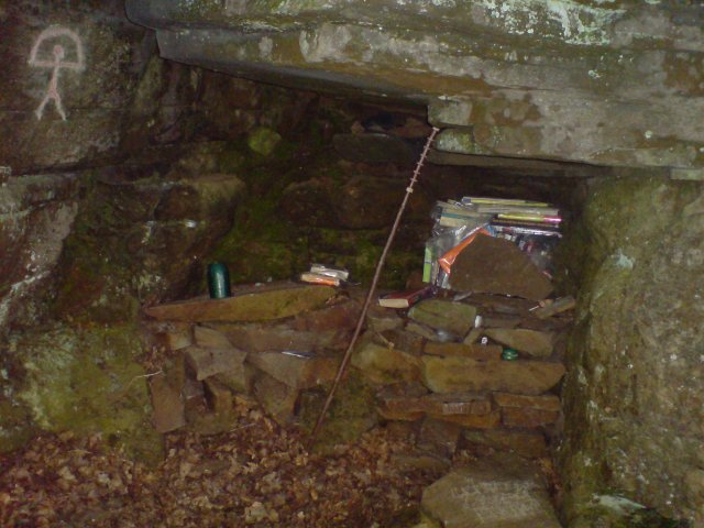 Library cave in the woods