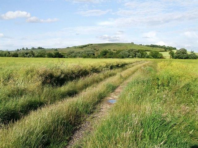 Farm Track, Old Bolingbroke