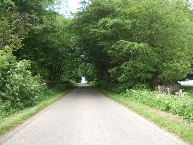 Road from Sortat to Lyth