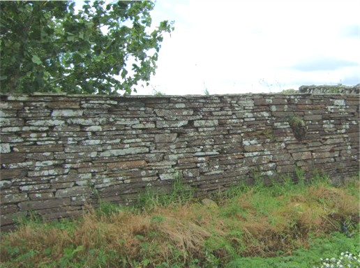 Caithness dry stone wall