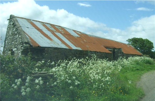 Old steading at Reaster