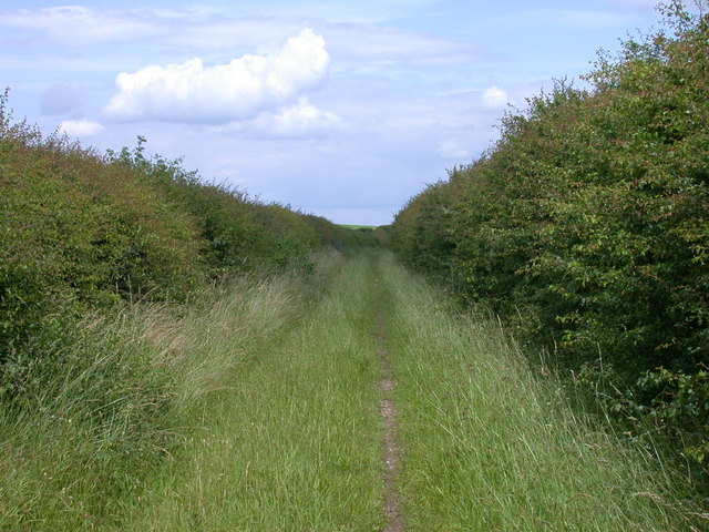 Byway alongside A14 Newmarket Bypass