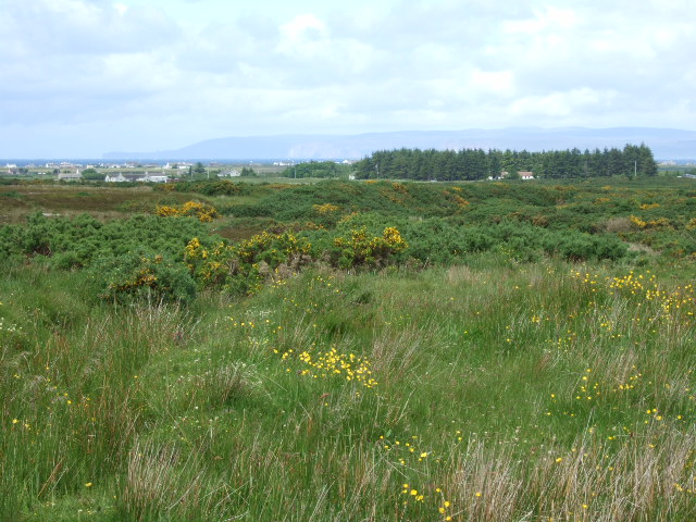 View towards Rattar Moss