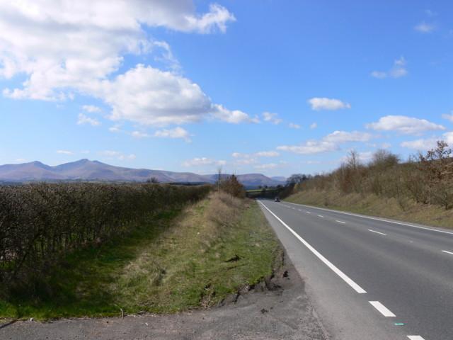 Roadside Embankment