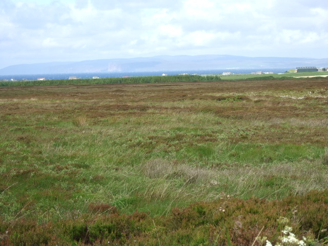 View over Moss of West Mey