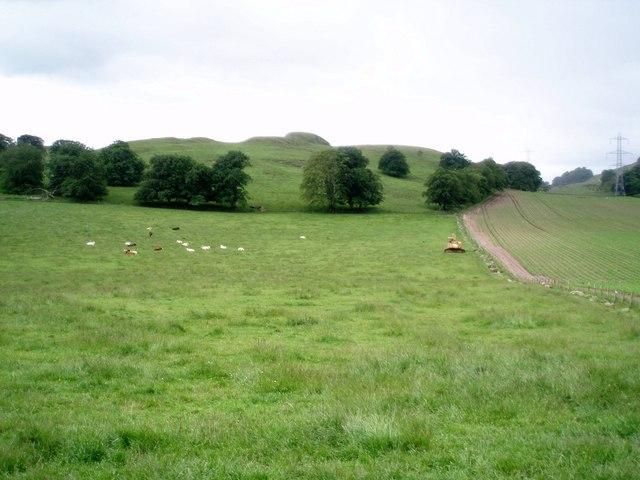 Field Below Castle Hill