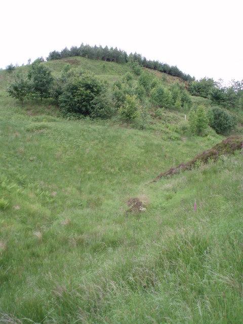 Small Burn below Turf Hill