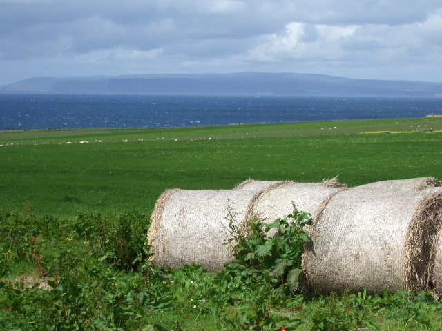 View north towards Orkney