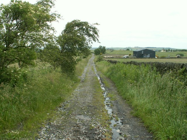 Bridleway looking to Joan Royd Lane