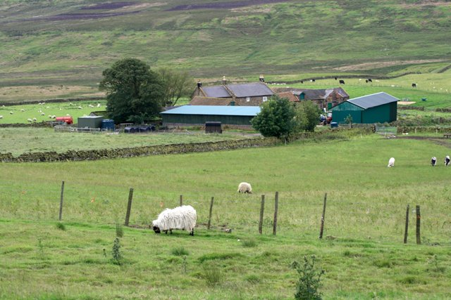 HighCliffe Farm