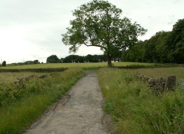 Bridleway meets Highway