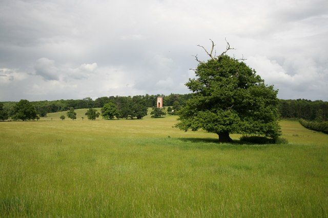 Bellmount Tower from parkland