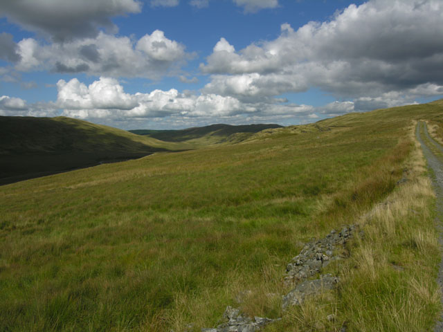 Lower slopes of Plynlimon