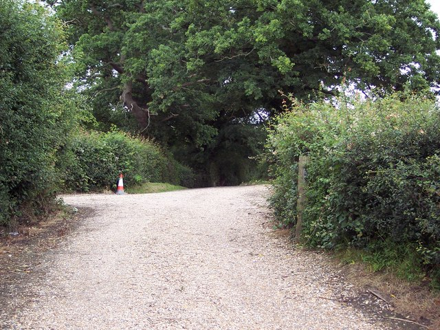 Driveway to Great Steeds Farm