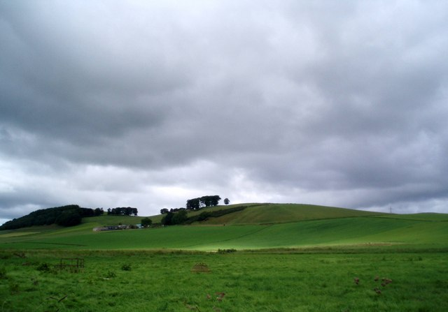 Fields in front of Meams Hill