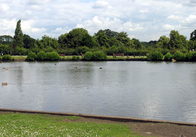 Forty Hall Lake