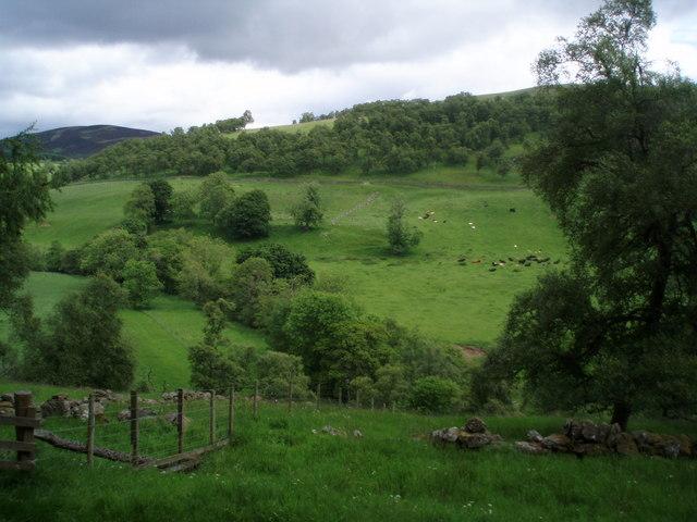 Lower Glen Prosen