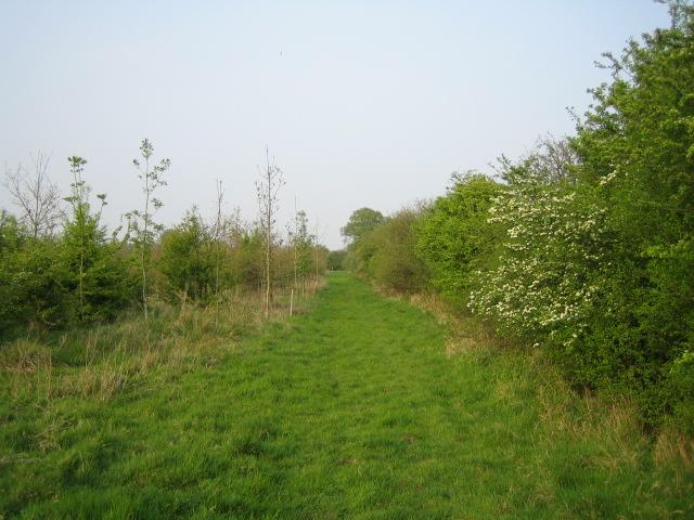 Bridleway near Prune Farm Cottages, Greatmoor