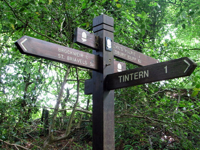 Fingerpost on the Offa's Dyke footpath above Tintern